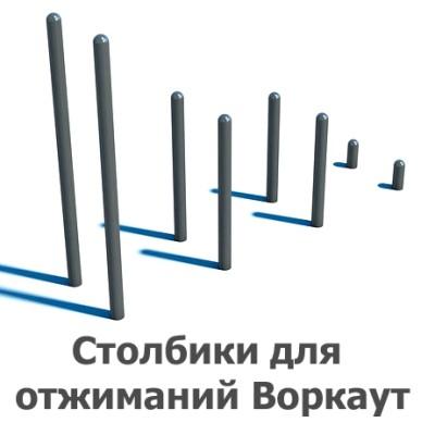 02-01-03-0001 Столбики для отжиманий Воркаут