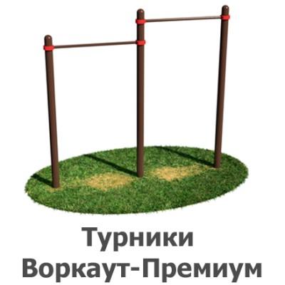 02-02-01-0002 Турники Воркаут-Премиум