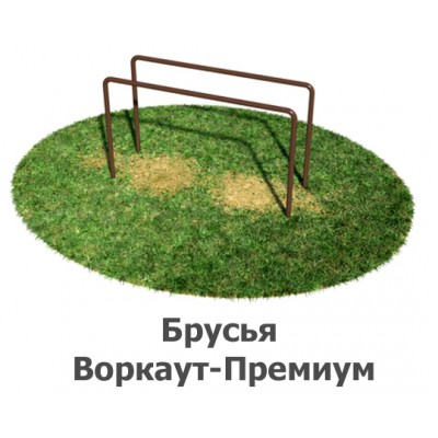 02-02-04-0001 Брусья Воркаут-Премиум