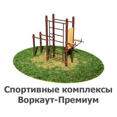 02-02-10-0006 Спортивные комплексы Воркаут-Премиум